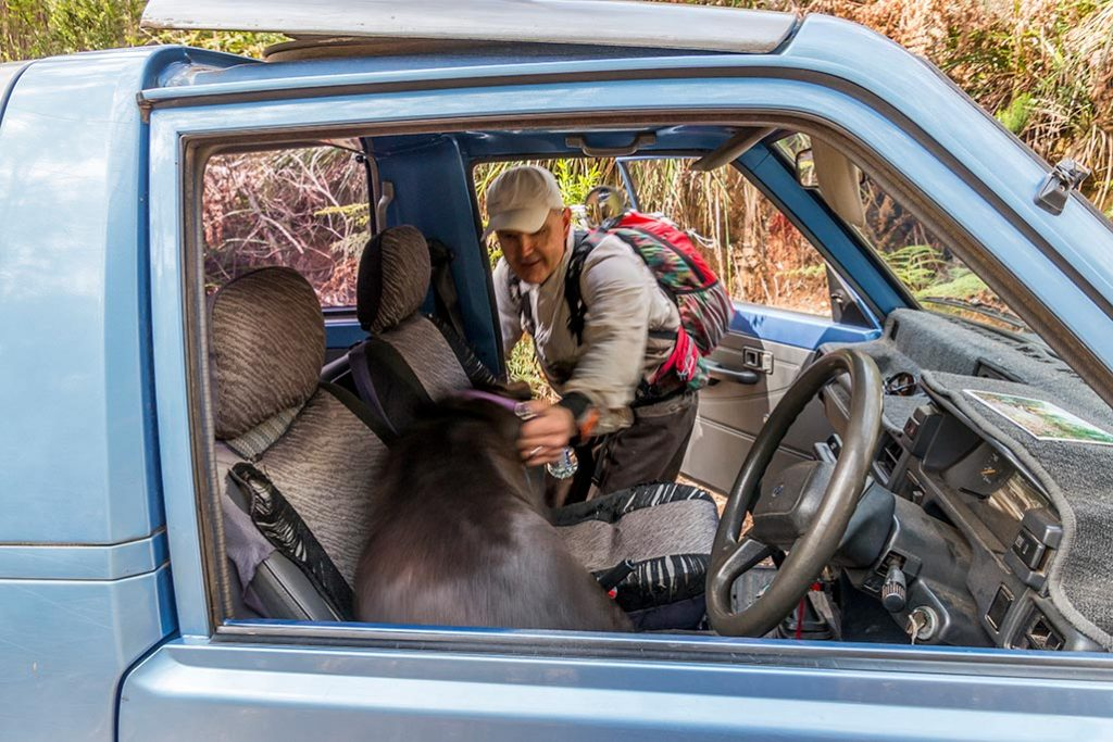 A man encourages his dog to get out of the driving seat of a four-wheel drive vehicle