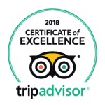 Tripadvisor excellence award badge