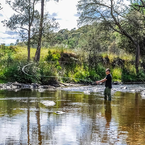 A man fly fishing in the river near Tin Dragon Cottages
