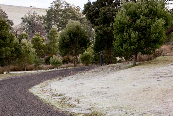 Frost on the ground at Tin Dragon Cottages in North East Tasmania