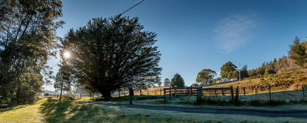 Graham on the road at the entrance to Tin dragon Cottages, frost on the ground and a deep-blue sky
