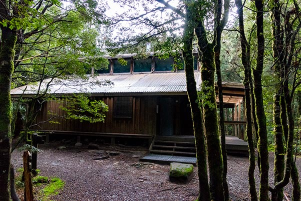 Pine Valley Hut is surrounded by rain forest