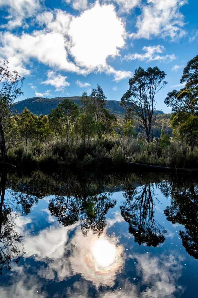 Perfect blue sky and cloud reflections in the Narcissus River at lake St Clair in the Cradle Mountain National Park, Tasmania