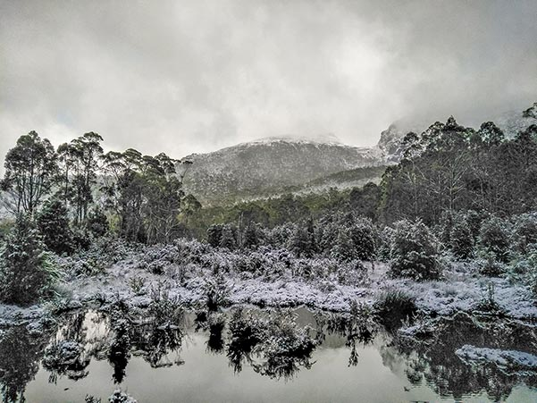 Muted colours of snow near the Pine Valley Hut