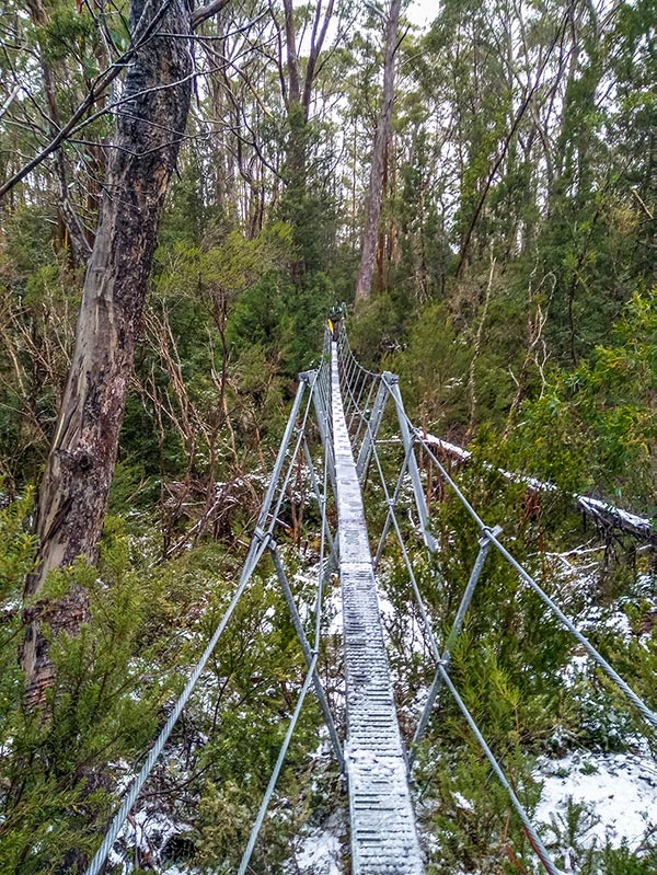 Ice-covered swing bridge on the Pine Valley Track