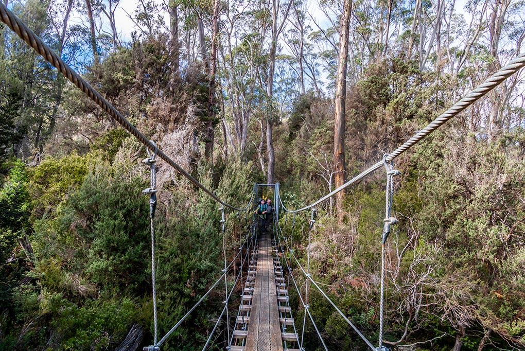 james and Graham on the second swing bridge over the Narcissus River on the Pine Valley track, Tasmania