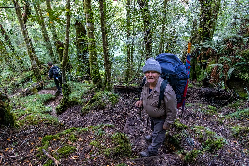 Graham on the steep track through the dense rainforest, on the Frenchmans Cap walk.