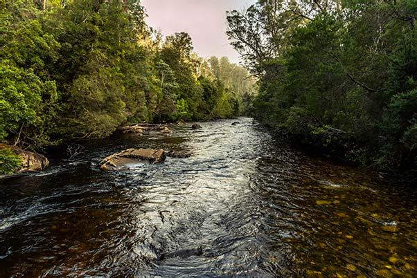 The Franklin River in the Franklin-Gordon Wild Rivers National Park Tasmania