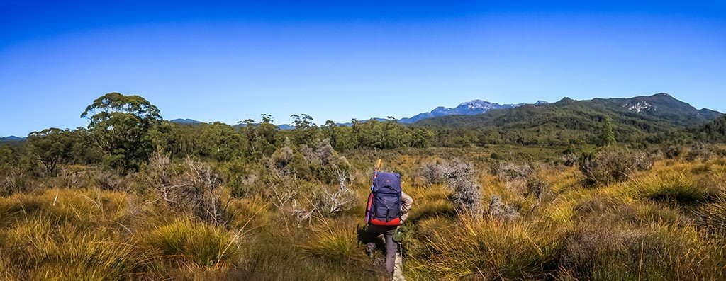 Graham with blue backpack in the centre surrounded by button grass plains and Pickaxe Ridge in the background.