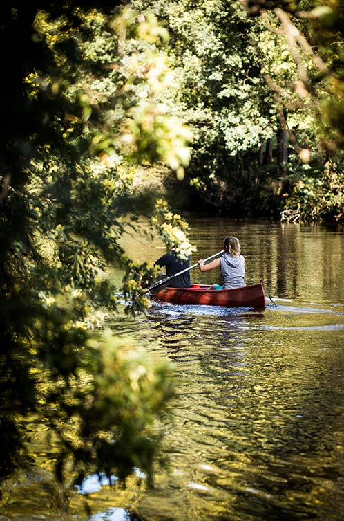 Man and woman paddling a canoe on the Ringarooma River at Tin Dragon Cottages in North East Tasmania