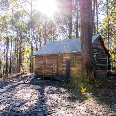 The timber Settlers Hut in the bush is suitable for the more adventurous family holiday in Tasmania.