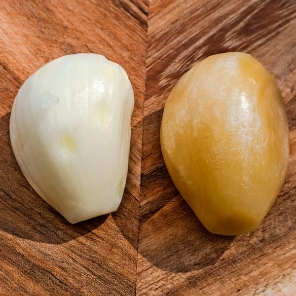 Fresh peeled bulb (left), thawed peeled bulb (right). The thawed bulb is yellow-brown colour.
