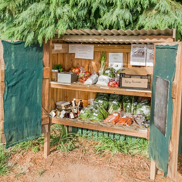Wooden roadside stall with two shelves filled with packets of fresh vegetables.