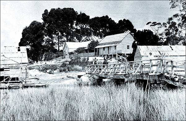 The Forester inn and bridge across the Forester River (C 1890)