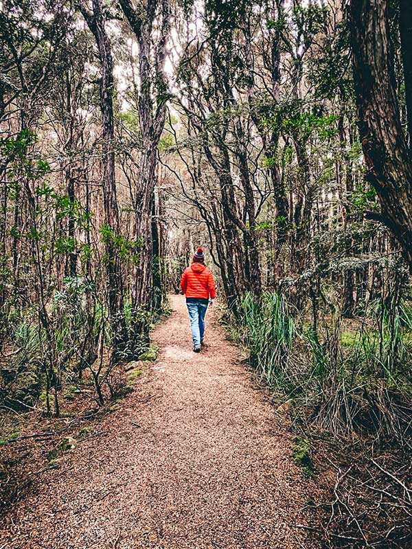 A woman wearing a red coat and red beanie is walking away from the camera along an easy walking trail in the Blue Tiers Forest Reserve.